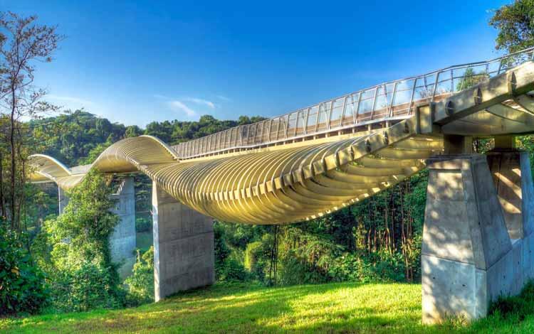 Tempat Wisata Favorit di Singapura - Henderson Waves Bridge