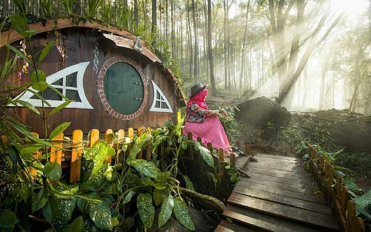 Tempat wisata Instagramable di Jogja - Rumah Hobbit Jogja