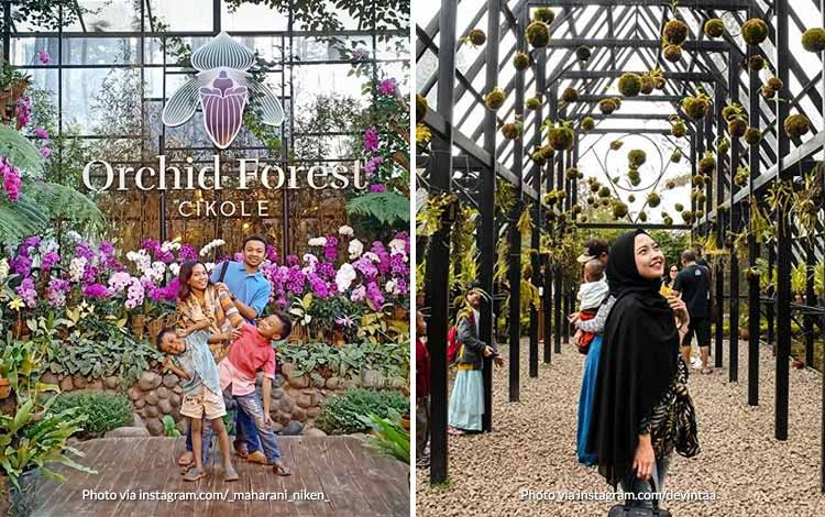 Tempat Wisata di Bandung Yang Instagramable - Orchid Forest