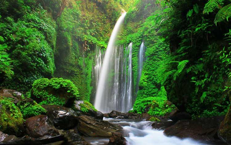 Tempat wisata terbaik di lombok - Air Terjun Sendang Gile