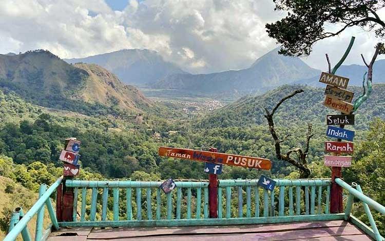 Tempat wisata terbaik di lombok - Taman Wisata Pusuk Sembalun