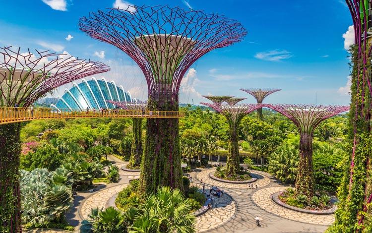 Info Terlengkap Singapura - Gardens by The Bay