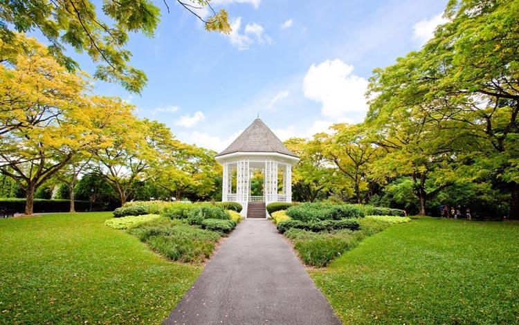 Info Terlengkap Singapura - Singapore Botanic Gardens