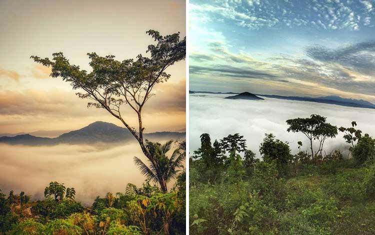 Bukit Banyon, Trenggalek, Jawa Timur