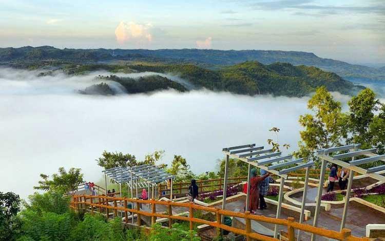 Negeri di atas awan - Kebun Buah Mangunan, Yogyakarta