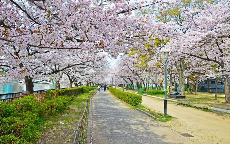 Tempat wisata terbaik di Jepang - Ueno Park