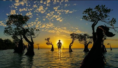 Objek wisata di Sumba Timur