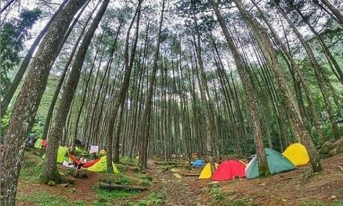 Tempat camp di daerah Bogor